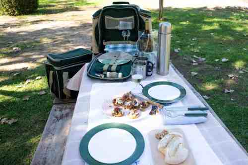 Picnic scene with a 2 person picnic backpack set up.