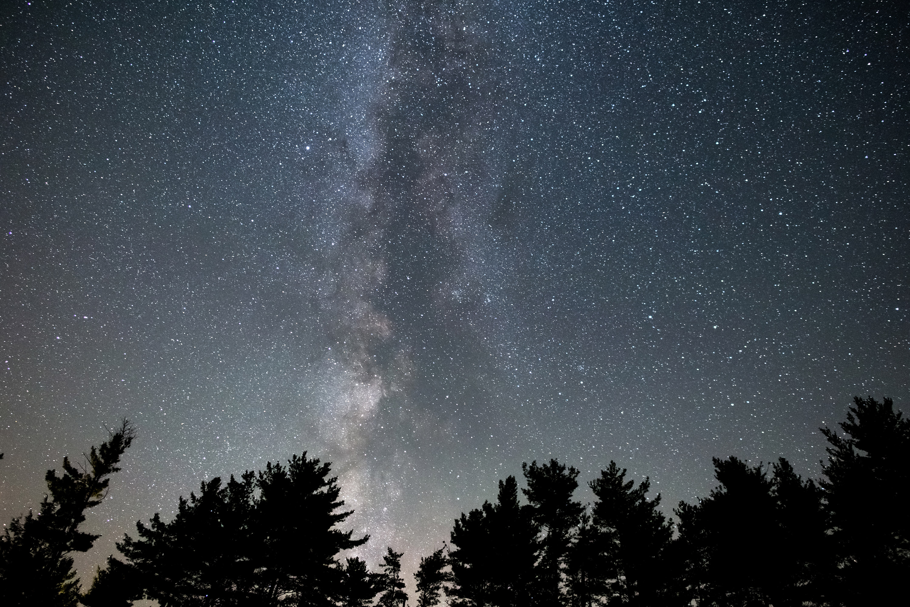 Milky Way Tree Silhouettes Picography Free Photo