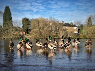 Day 41.2 – Chilly underfoot