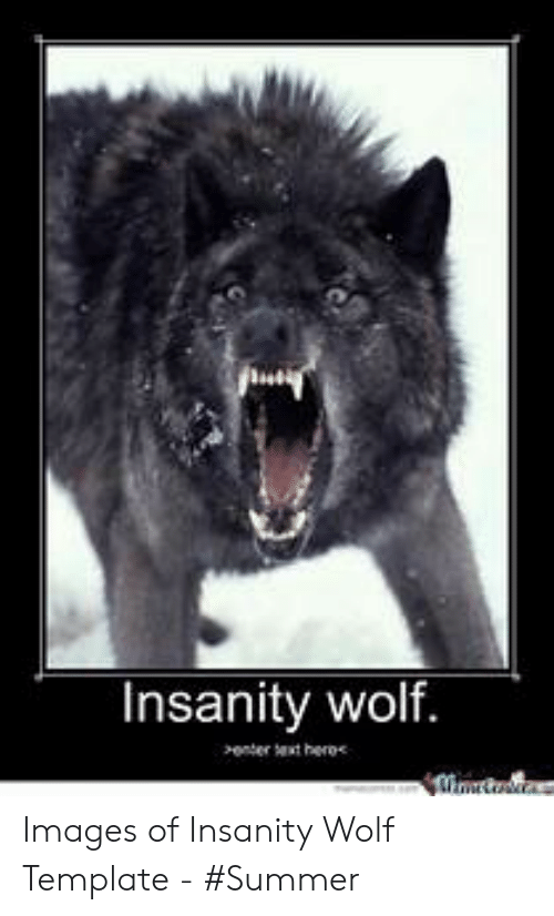 25 Best Memes About Wolf Template Wolf Template Memes