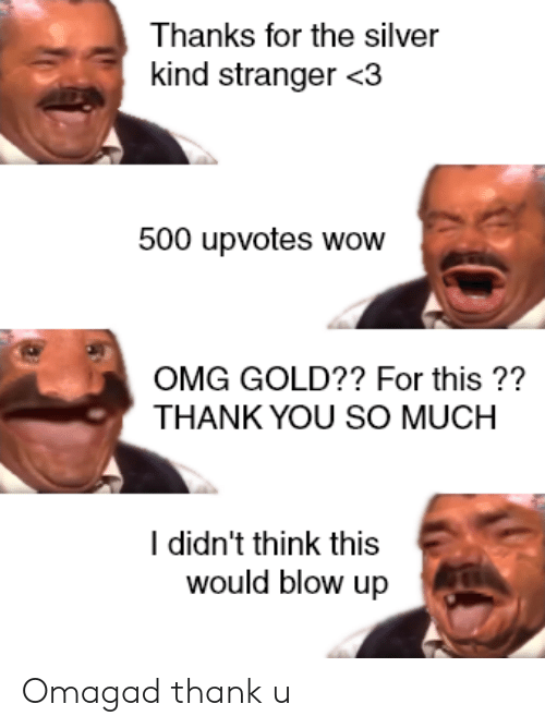 Thanks For The Silver Kind Stranger 3 500 Upvotes Wow Omg Gold
