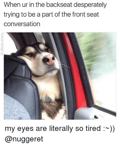 25 Best Memes About So Tired So Tired Memes