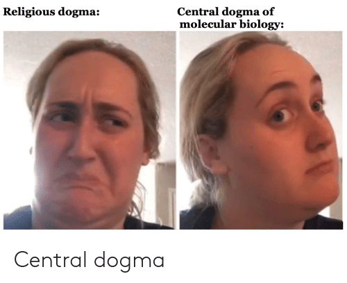 Oh You Know The Central Dogma You Must Know Everything About