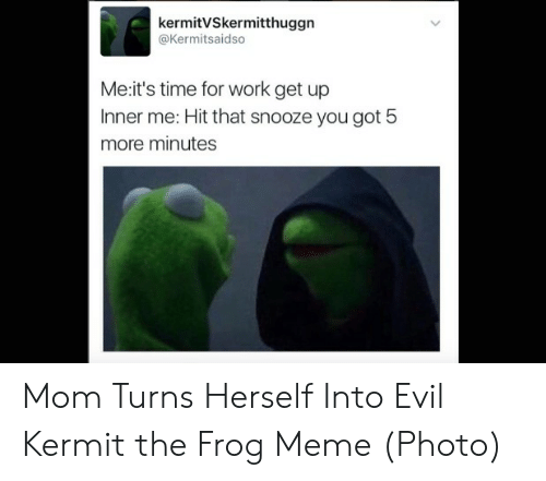 Evil Kermit Meme My Friend Courtney And I Both Are On By