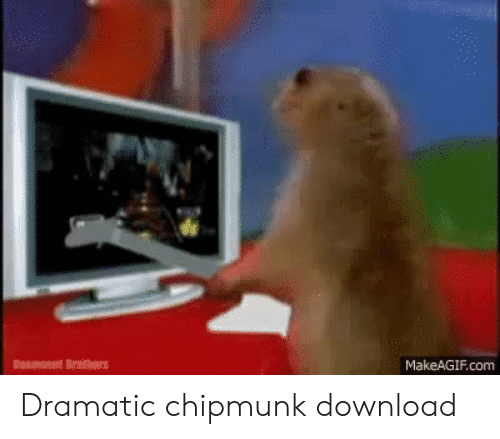12 Unbelievably Adorable Pictures Of Chipmunks