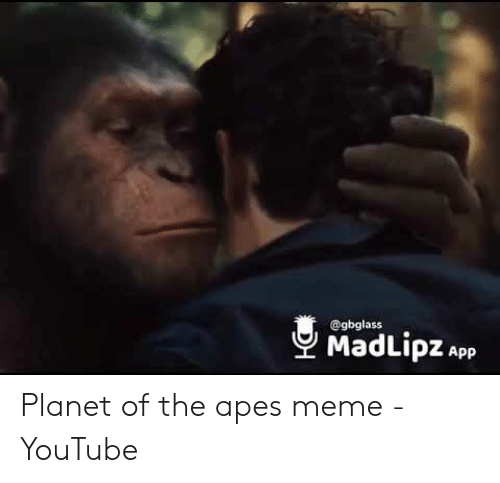 25 Best Memes About Planet Of The Apes Caesar Planet Of The