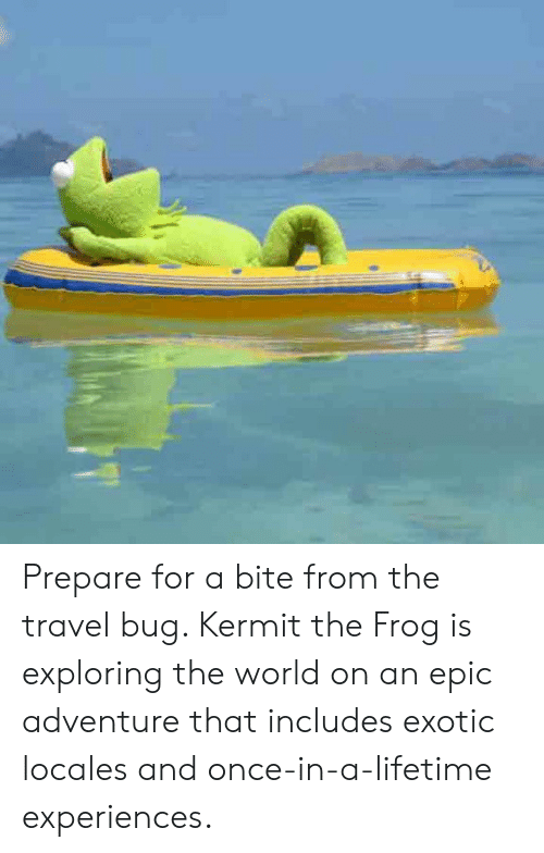 Prepare For A Bite From The Travel Bug Kermit The Frog Is