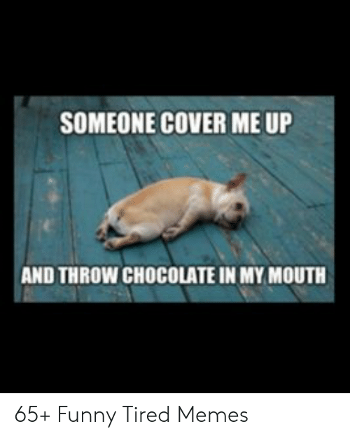 Someone Cover Me Up And Throw Chocolate In My Mouth 65 Funny