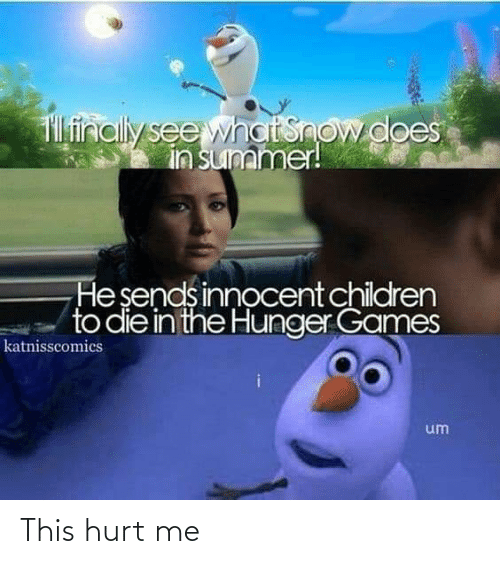 Memes The Hunger Games Amino
