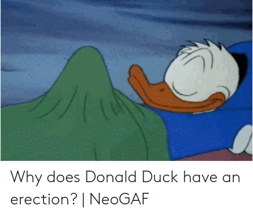 Donald Duck Bed Blank Template Imgflip