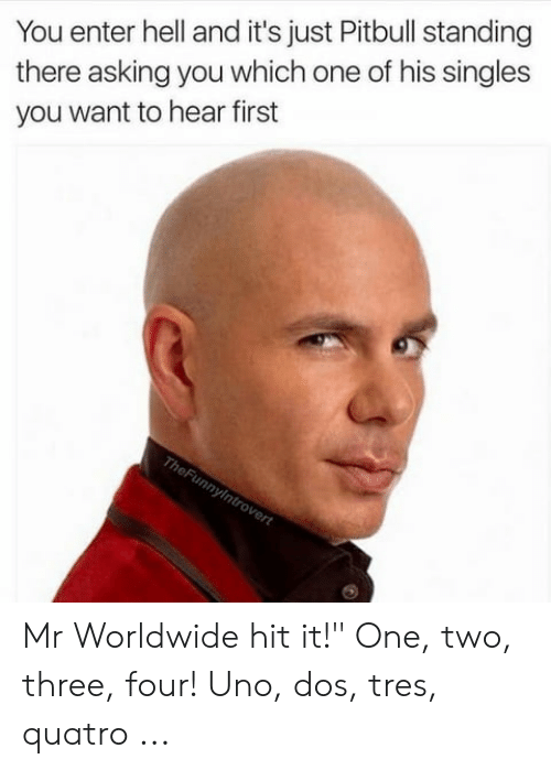 25 Best Memes About Pitbull Worldwide Meme Pitbull Worldwide