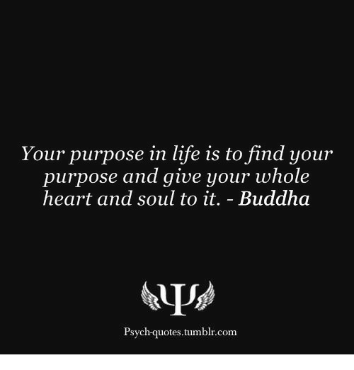 Kill Yourself Without Causing Pain To Others Find A Purpose To