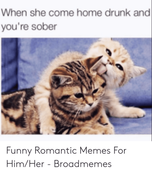 🅱️ 25+ Best Memes About Romantic Good Morning Memes | Romantic Good  Morning Memes