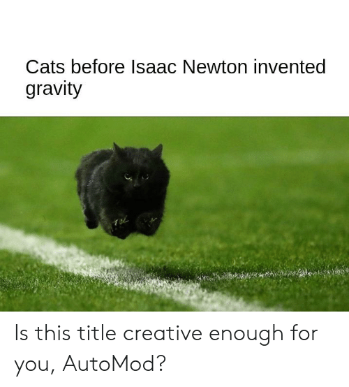 Cats Before Isaac Newton Invented Gravity Is This Title Creative