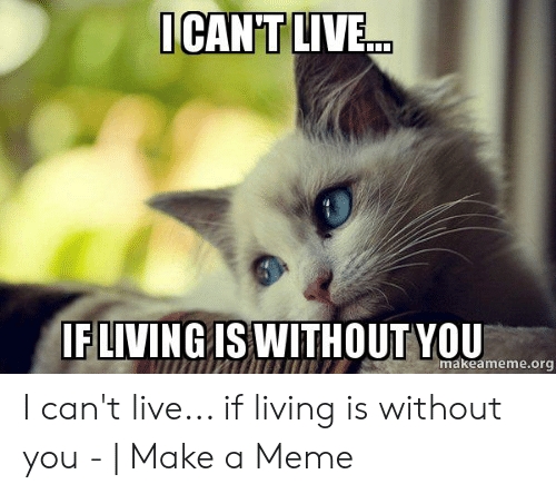 25 Best Memes About What Would I Do Without You Meme What