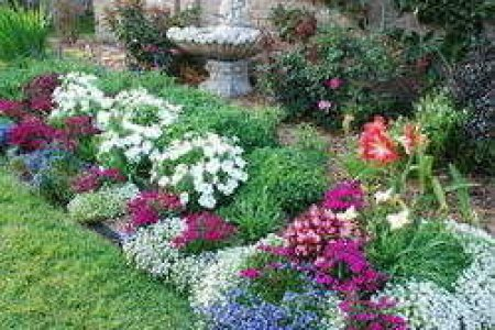 florida florida gardening ideas landscaping and gardening design florida gardening ideas stunning way to add tropical colors to your outdoor landscaping - Florida Gardening Ideas