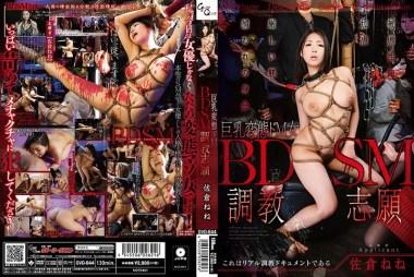 BDSM調教志願 佐倉ねね