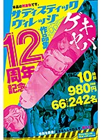 サディスティックヴィレッジ12周年記念作品集10時間2枚組