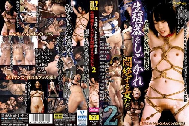 こぶ縄くいこみ触手棒責め 生殖器をしごかれ悶絶する女たち2