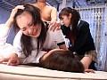 制服少女を凌辱してボロボロにするのサンプル画像