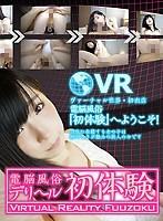 【VR】電脳風俗 デリヘル初体験 永井みひな