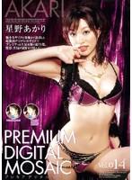プレミアデジタルモザイク Vol.014 星野あかり