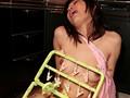 朝から晩までセックスざんまい 佐倉美佐のサンプル画像