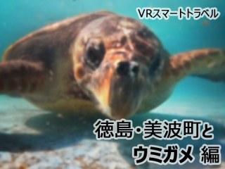 【VR】徳島・美波町とウミガメ 編 VRスマートトラベル