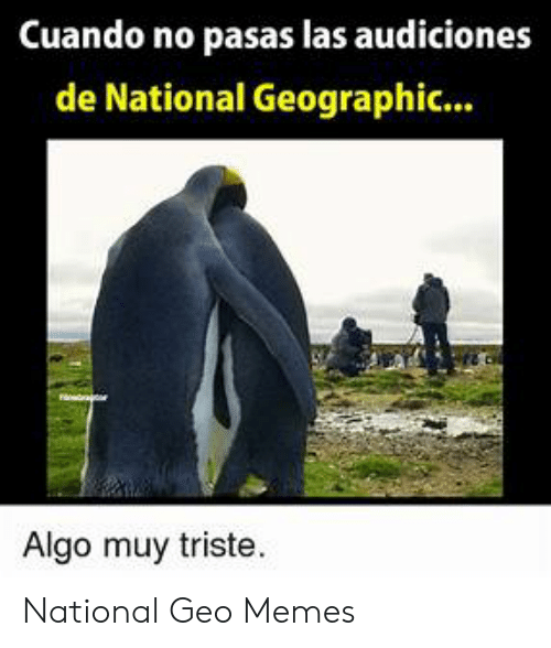 25 Best Memes About National Geo National Geo Memes