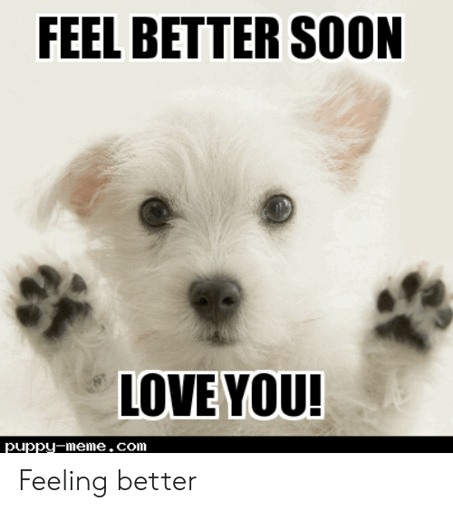 Funny Get Well Soon Memes Baby Animals Pictures Cute Baby