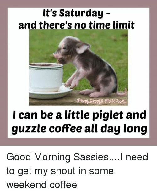 It S Saturday And There S No Time Limit I Can Be A Little Piglet