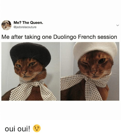 Me The Queen Me After Taking One Duolingo French Session Oui Oui Queen Meme On Esmemes Com