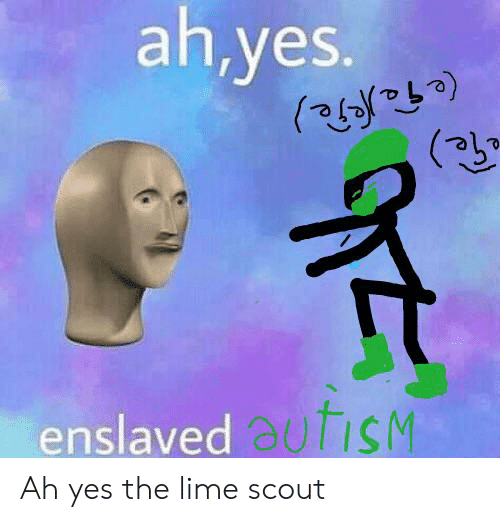 25 Best Memes About Lime Scout Lime Scout Memes