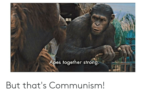Apes Together Strong But That S Communism Communism Meme On