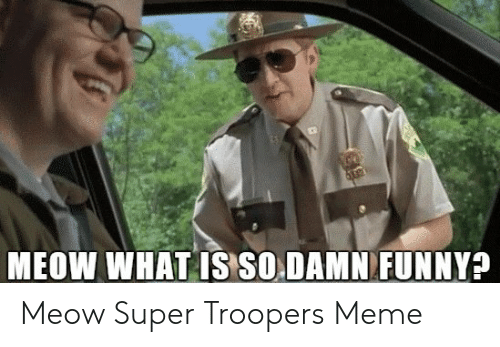 25 Best Memes About Meow Super Troopers Meow Super Troopers