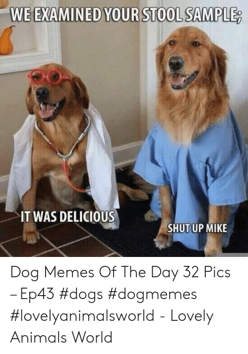 25 Best Memes About We Examined We Examined Memes