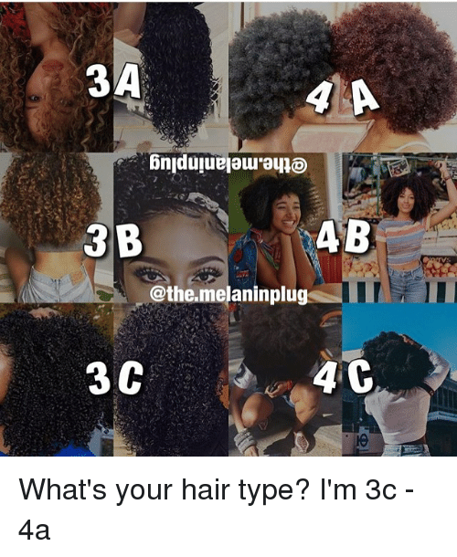 3a 4b 3 B C Themelaninplug 3c 4 C What S Your Hair Type I M 3c