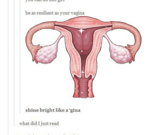 Memes Penis And Potato A Vagina Can Go Back To Its Original Size
