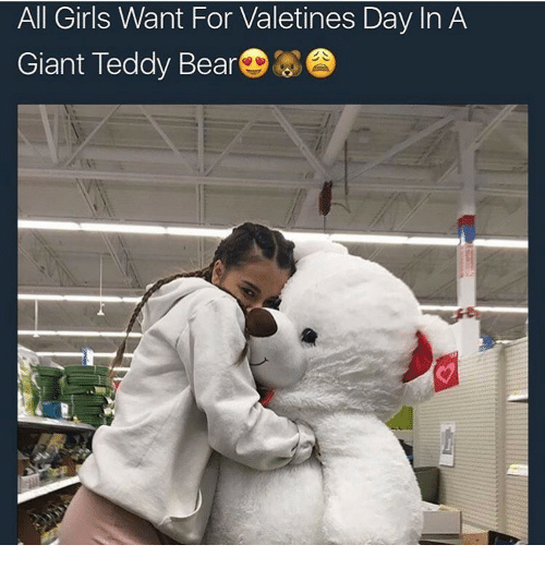 All Girls Want For Valetines Day In A Giant Teddy Bear Girls