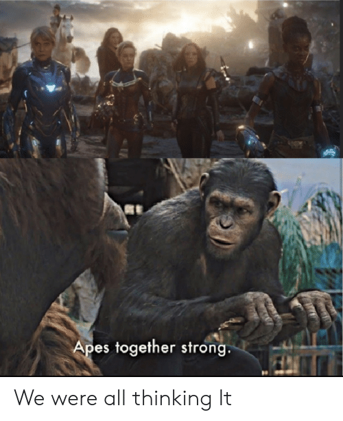 Apes Together Strong We Were All Thinking It Dank Meme On Me Me