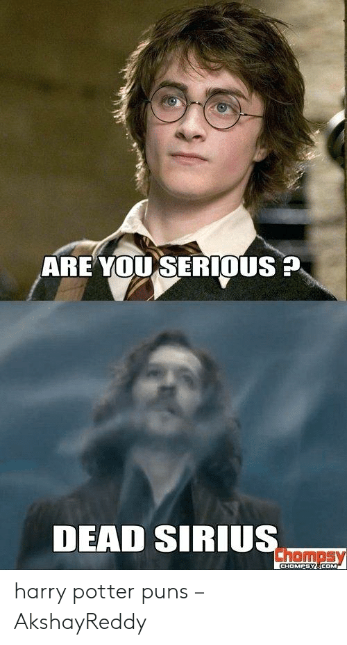 Are You Serious Dead Sirius Chompsy Chompsy8com Harry Potter