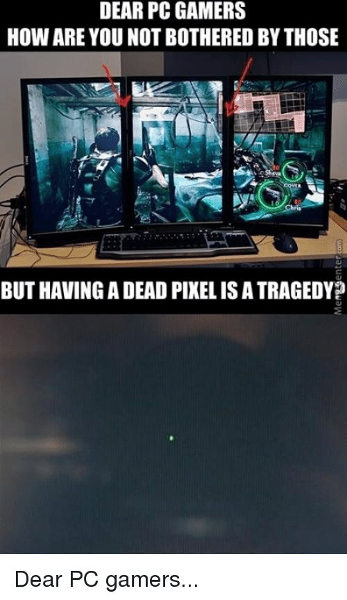 Dear Pc Gamers How Are You Not Bothered By Those But Having A Dead