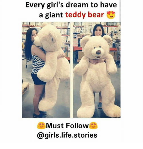 Every Girl S Dream To Have A Giant Teddy Bear Must Follow Girls