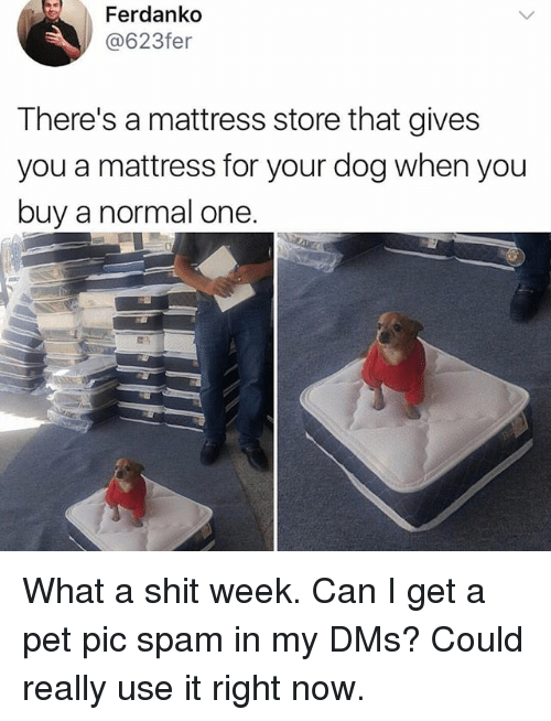 Memes And Mattress Ferdanko 623fer There S A That Gives