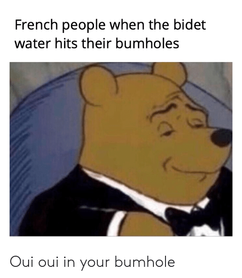 French People When The Bidet Water Hits Their Bumholes Oui Oui In Your Bumhole Water Meme On Me Me