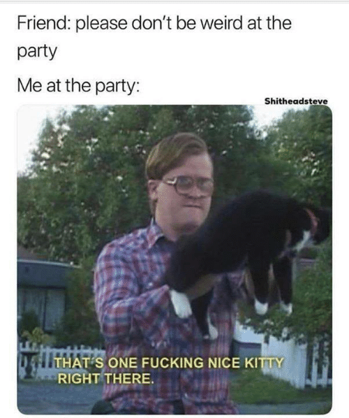 Friend Please Don T Be Weird At The Party Me At The Party