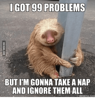 GOT 99 PROBLEMS BUT ITM GONNA TAKE a NAP AND IGNORE THEM ALL ...
