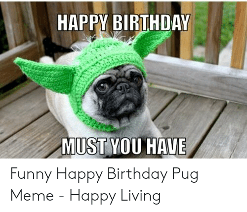 Happy Birthday Must You Have Funny Happy Birthday Pug Meme Happy Living Birthday Meme On Me Me