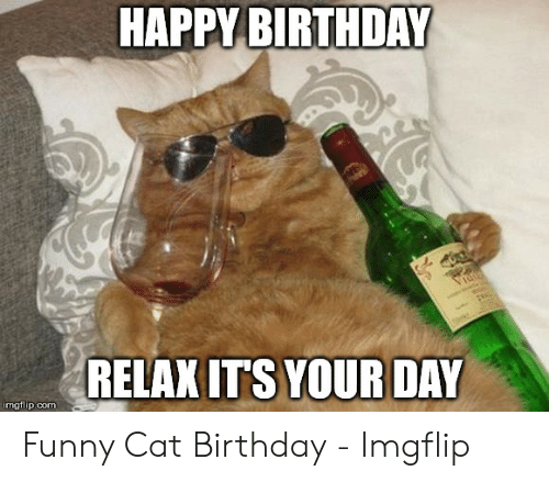 Friend Birthday Old Age Over The Hill Cat Humor Card Zazzle Com