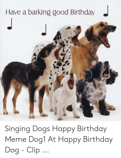 Have A Barking Good Birthday Singing Dogs Happy Birthday Meme Dog1 At Happy Birthday Dog Clip Birthday Meme On Me Me